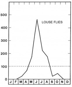 Season for louse flies